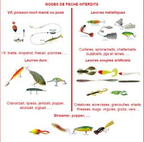 Les modes de pêche autorisés en période de fermeture de la pêche des carnassiers