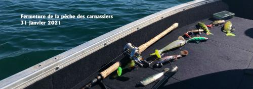 Fermeture de la pêche des carnassiers le 31 janvier 2021