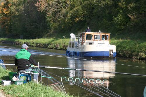 Reconfinement et pratique de la pêche (25/11/2020)